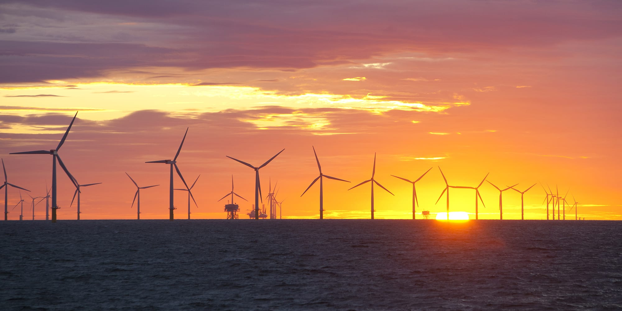 Photograph of sun setting behind a field of wind turbines